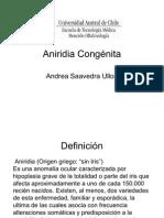 Aniridia Congénita