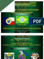 CFO - APMCV - ESTUDO COMPLEMENTAR - CFO I - A -  PRINCIPAIS ASPECTOS DAS CONDIÇÕES DE TRABALHO