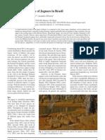 Astete Et Al 2008 Jaguar Ecology in Brazil s