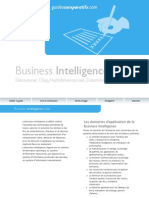 Guide Business Intelligence