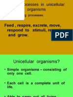 Living Processes in Unicellular Organisms