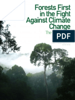 Forests First Report