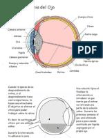 Post Operatorio Desprendimiento de Retina