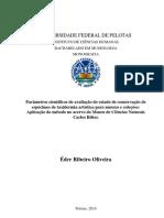 Monografia Éder Ribeiro Oliveira