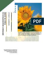 PDF. Síntesis y diagnóstico climático de cd. Juárez,Chih.