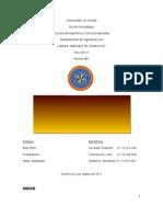 Lechadas y Pastas (Informe 1NUEVO)