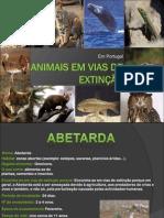 A. P. animais em vias de extinção