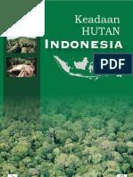 Keadaan HUTAN Indonesia