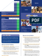 Afrometro (Draft) Brochures 011711[1]