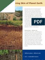 Soil Flyer 2008 - English
