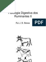 Fisiologia Digestiva Dos Rum in Antes II