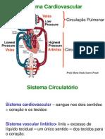 Aula_Sistema_Circulatorio