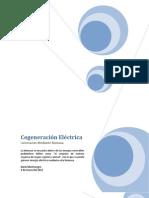 Cogeneración Eléctrica