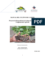 Manual Del Cultivo de Camote