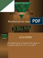 1b87Brachial Plexus Injuries