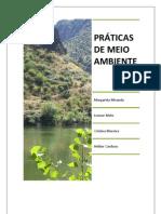 Microsoft Word - Trabalho HST Margarida Cristina Leonor Helder