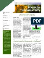 Boletín Curso Virtual 2011