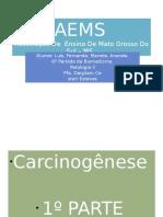 Carcinogêneses P01