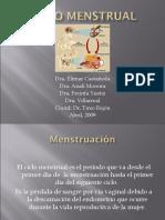 Ciclo Menstrual Ivss