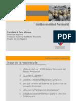 Institucionalidad Ambiental Patricia de La Torre