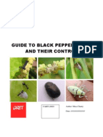 Copy of Black Pepper Field Guide