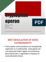 Trp Operon Presentation