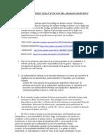 Estructura y Funcion 2011 Problemas