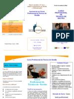 ESMAIA - Panfleto Curso Profissional T  Gestão