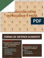 INTERACCIÓN ENTRE DEPREDADOR Y PRESA