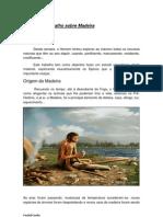 Trabalho sobre A Madeira (pdf)