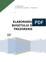 Elaborarea Bugetului de Trezorerie