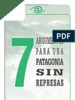 7 Argumentos Para Una Patagonia Sin Represas