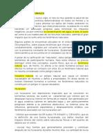 Ejemplo_ 1 Sistemas de Clasificación_2001