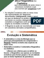 Sistemática Filogenética ou Cladística Aula 4º Ano