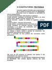 ALIMENTOS_CONSTRUTORES