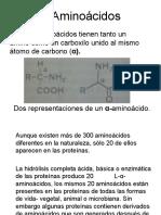 5. AMINOACIDOS
