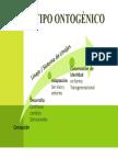 fenotipo ontogenico