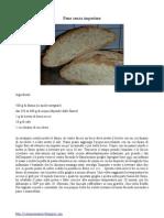 Pane senza impastare.pdf