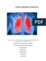 Function of the Respiratory System 4.2