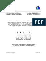 IXAG Tesis Completa Ver07