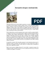 O viziune alternativă despre războiul din Irak