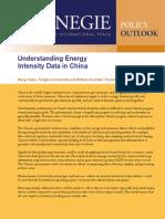 Understanding Energy Intensity Data in China