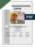 ZHOB Profile