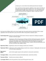 Aquaculture Biomin