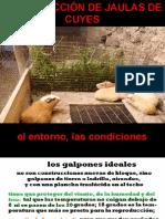 CONSTRUCCIÓN JAULAS DE CUYES