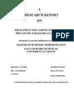 Job Satisfaction Among Employees in Nationaliized Bank....AP
