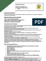 Fichas Instructivas