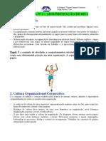 (2) Wanusa Campos Centurión - Administração de RH 2