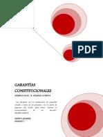 GARANTÍAS CORREGIDO