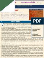 Newsletter Vol1 No10 11 JUL 2010